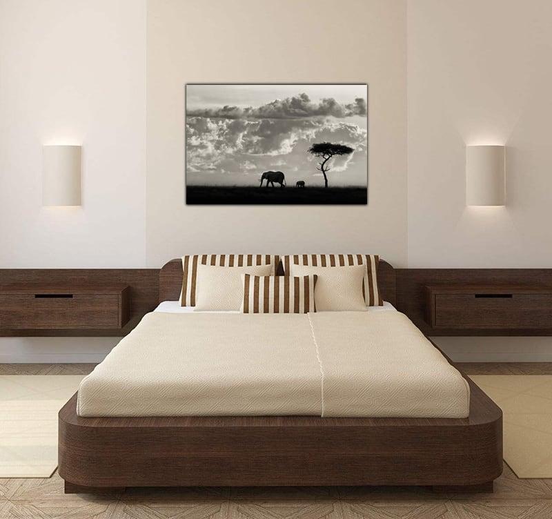 Tableau décoratif en photo d'art limitée de deux éléphants qui marchent le long de la plaine