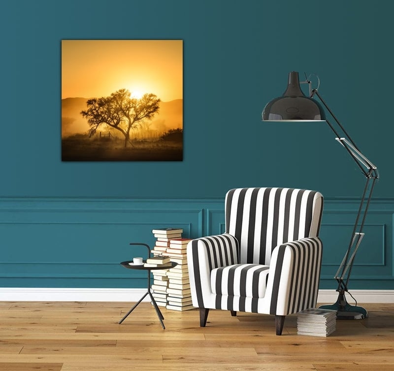 Toile murale aluminium design d'une photo d'art présentant un coucher de soleil à travers un arbre