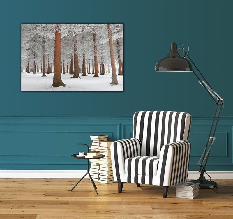 photo d art moderne for t enneig e artwall and co. Black Bedroom Furniture Sets. Home Design Ideas