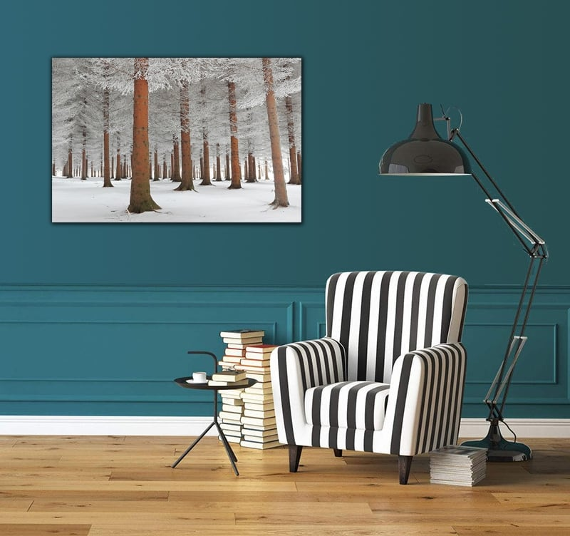 Modern art photo of trees in a white forest to create a zen decoration