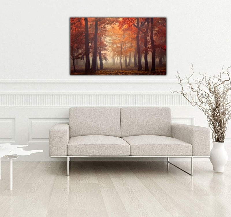Modern art photo on aluminium of a forest in autunm for a creative wall decoration