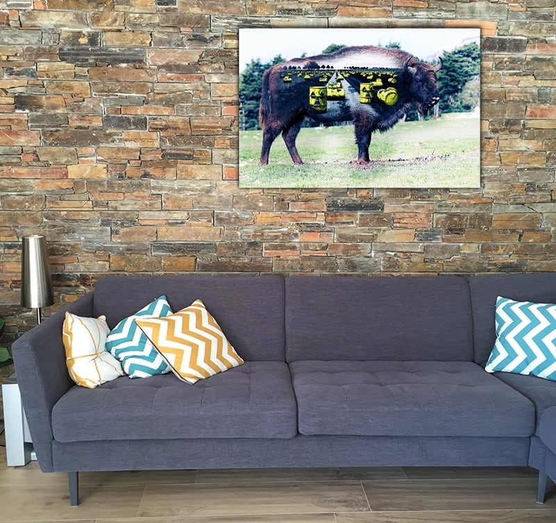 Design Art Photo of a buffalo to create a zen decoration into your home