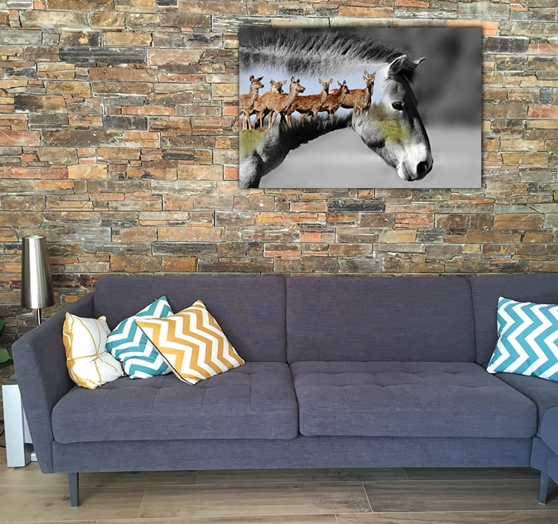 Design art photo of an horse for a modern wall decoration