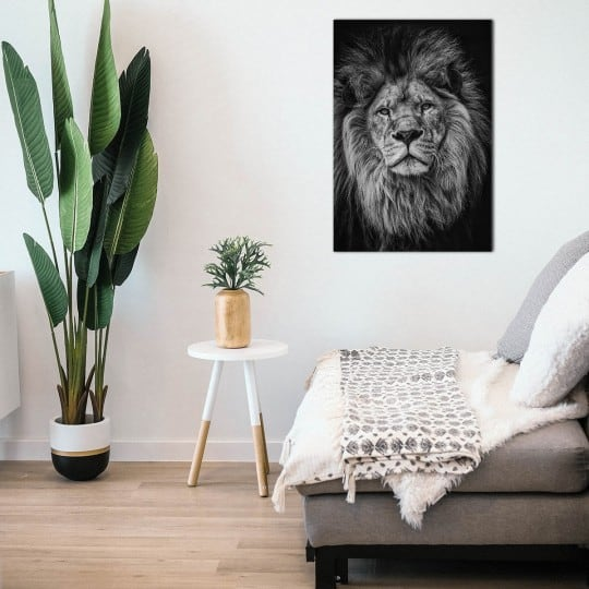 Tableau aluminium de lion en photo d'art sur fond noir