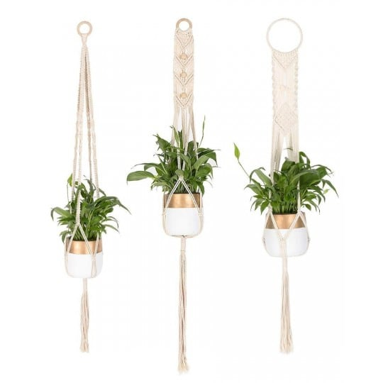 Plant wall macrame for a unique interior with nature touch
