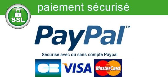 Paypal paiement sécurisé sur Artwall and Co