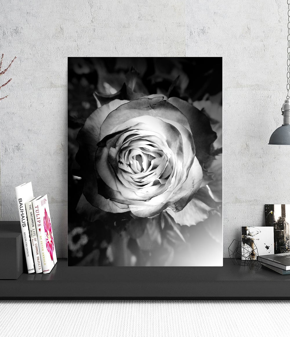 Tableau deco aluminium d'une rose en noir et blanc