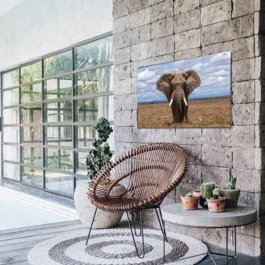 art photo of an elephant to create a design wall decoration on aluminium