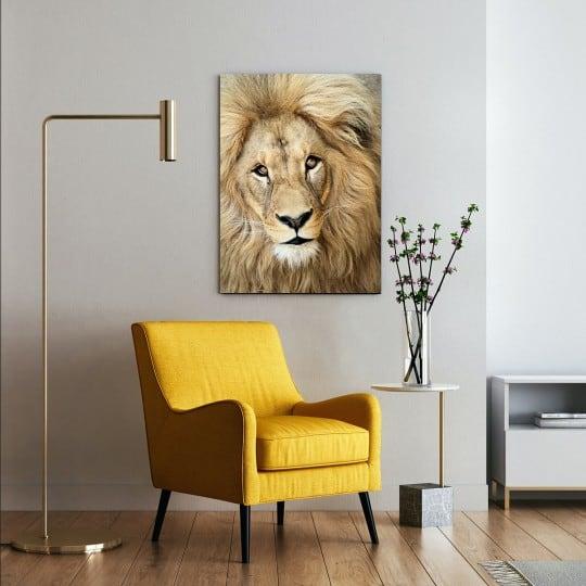 Lion portrait art photo on aluminium for a design wall decoration