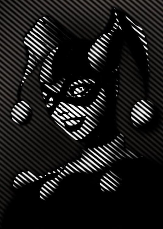 Poster murale en métal de Harley Quinn des DC Comics