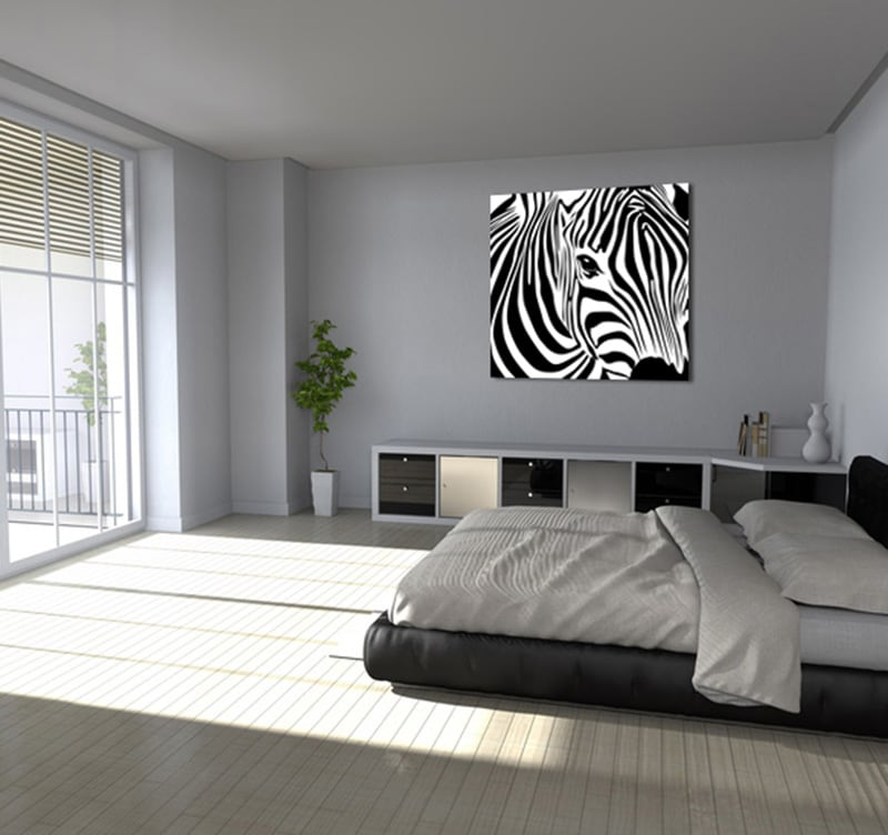 tableau animaux wild z bra. Black Bedroom Furniture Sets. Home Design Ideas